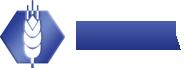 logo_NGFA4